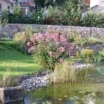 Zahradní jezírko 8