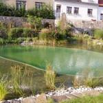 Zahradní jezírko 3